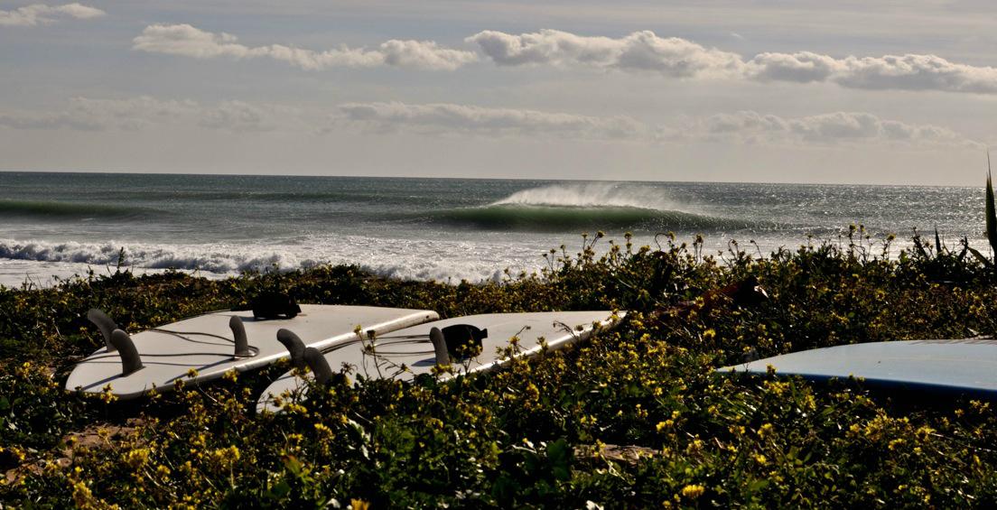 Irgendwo läuft immer eine perfekte Welle.