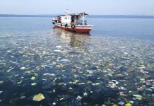 Die Ozeane sind voller Plastikmüll.
