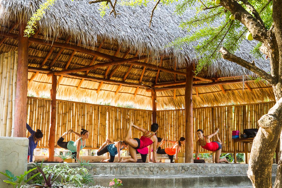 Tägliche Yogastunden bringen deinen ausgesurften Körper wieder in Topform.