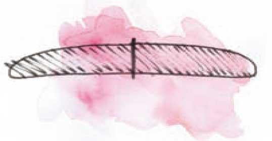 Bei Domed Rails nimmt der Shaper an den Boardkanten einiges an Material weg.
