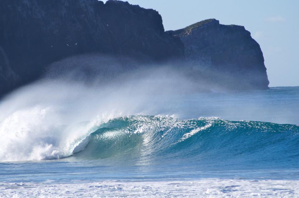 Eine echte Schönheit diese Welle