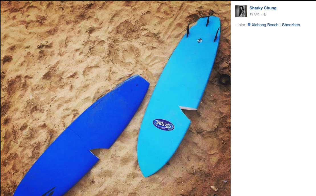 Das Ergebnis der Aktion. Ein Surfboard kostet übrigens auch in China um 450 Dollar.