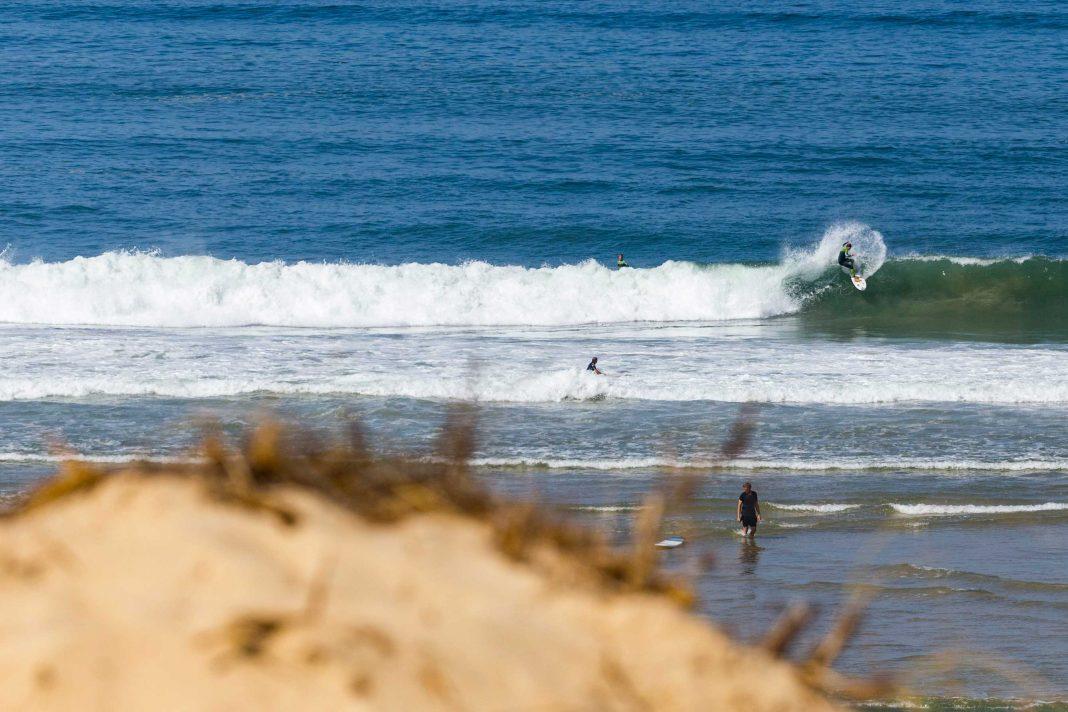 Corona und Surfen