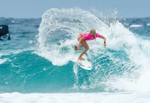 Ladys vs. Blue Bottles in Snapper Rocks