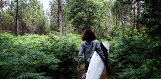 Ab in die Wildnis Frankreichs