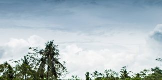 Das Paradies für jeden Hipster in Java