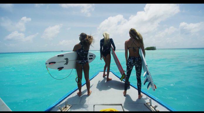 Der Clip Jungle von Morgan Maassen ist das beste Video, das du diese Woche zu sehen bekommst