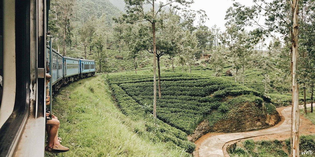 Zugfahren ist in Sri Lanka noch ein echtes Erlebnis – und spottbillig.