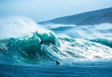 Kael Walsh hat keine Angst vor Wellen