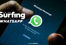 Der brandneue Whatsapp-Service für PRIME Surfing.