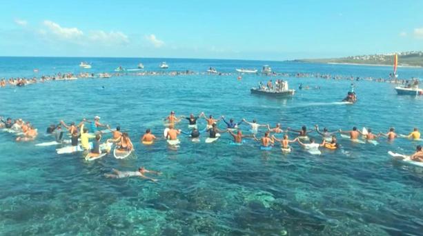 Tötliche Hai-Attacke vor La Reunion