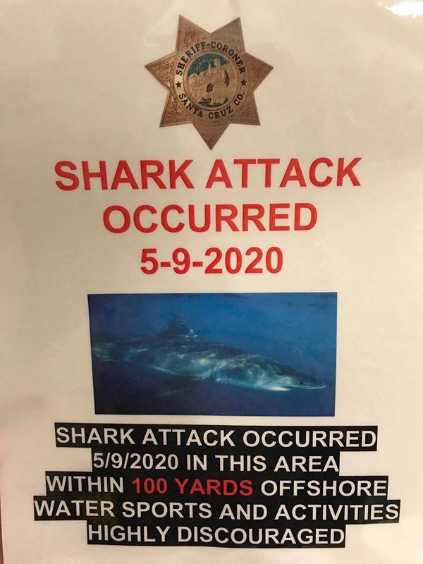 Haiangriff Santa Cruz